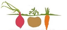 ΜΠΑΚΑΣ Logo